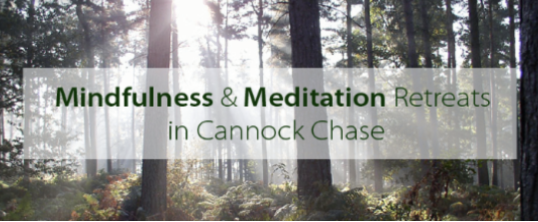 Mindful Meditation Retreats in the Cannock Chase.