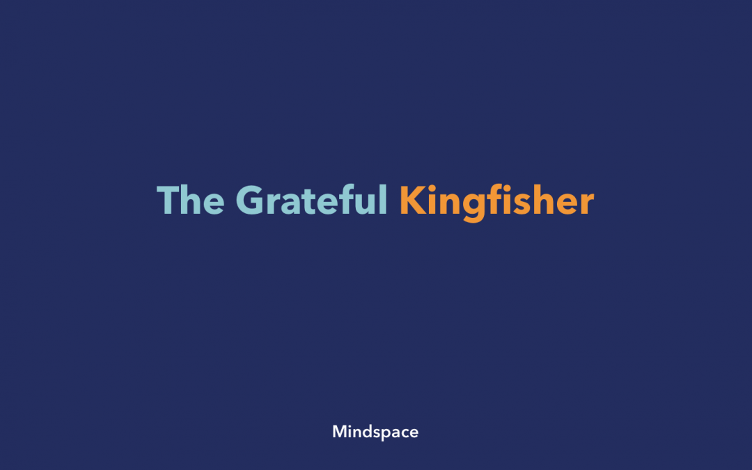 The Grateful Kingfisher