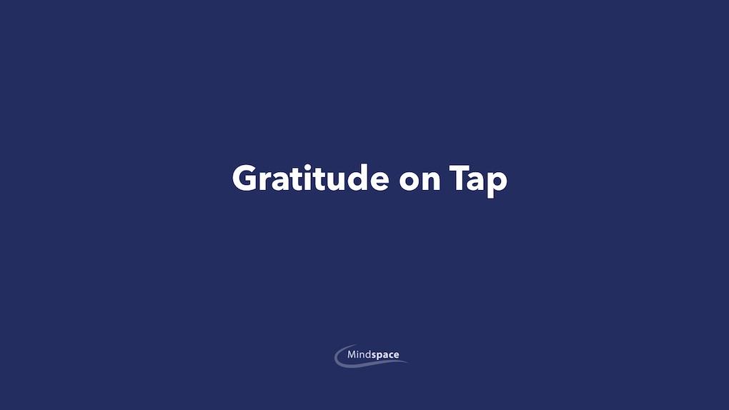 Gratitude on Tap