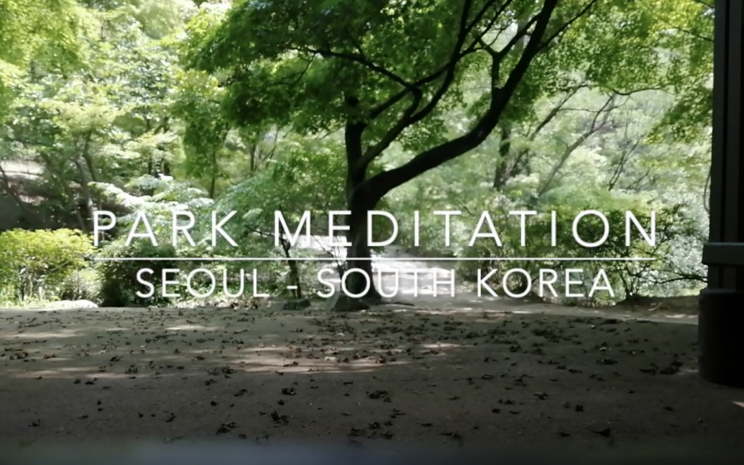 Park Meditation – Seoul, South Korea