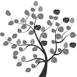Little_tree