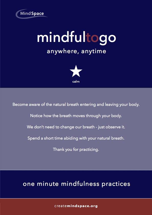 MindfulnesstoGo_2