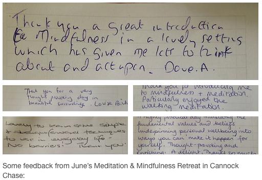 Meditation and Mindfulness Retreat, Feedback